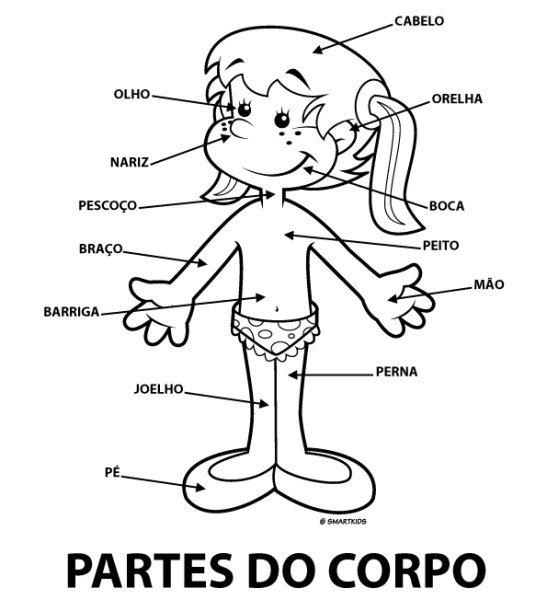 partes-do-corpo